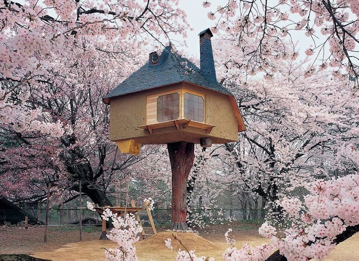 Домик на дереве в Хокуто