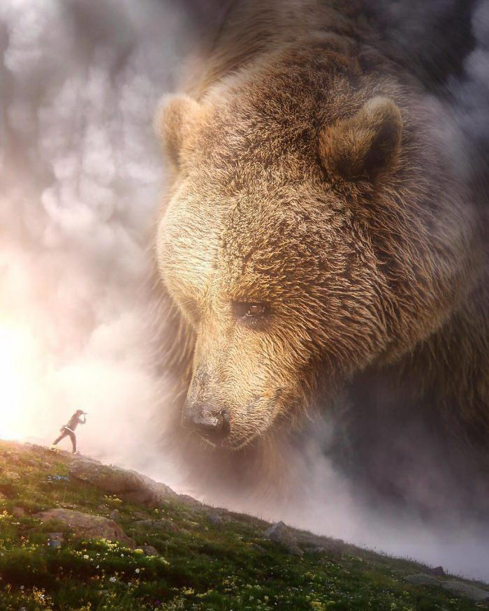 Большие животные в современном мире: работы Eben