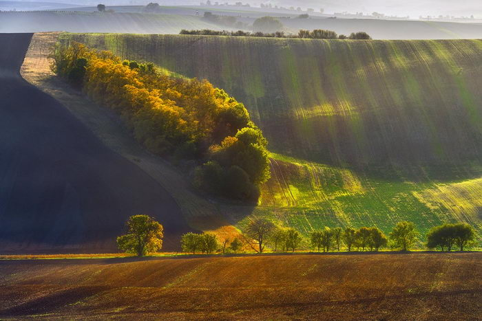 Осенняя Моравия в снимках Grzegorz Lewandowski
