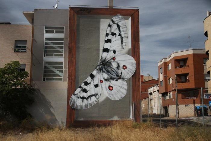 Работы французского мастера граффити Mantra