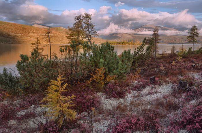 Север России в фотографиях Антонины Андреевой