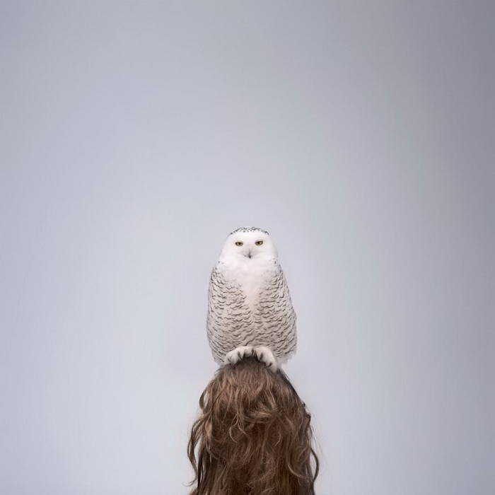Отношения людей и животных: проект Philip Kanwischer
