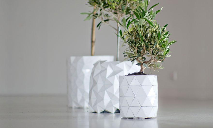 Горшки, растущие вместе с растениями