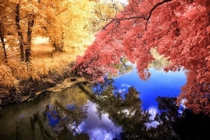 Инфракрасные фотографии природы Helios Spada