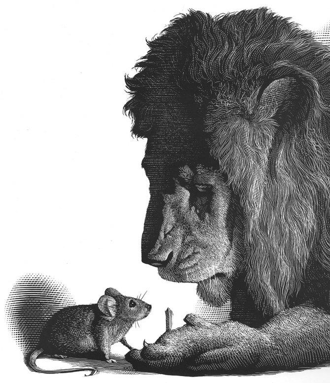 Подборка иллюстраций Mark Summers