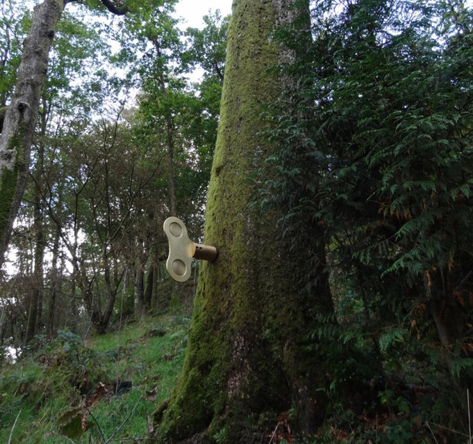 Инсталляция The Clockwork Forest