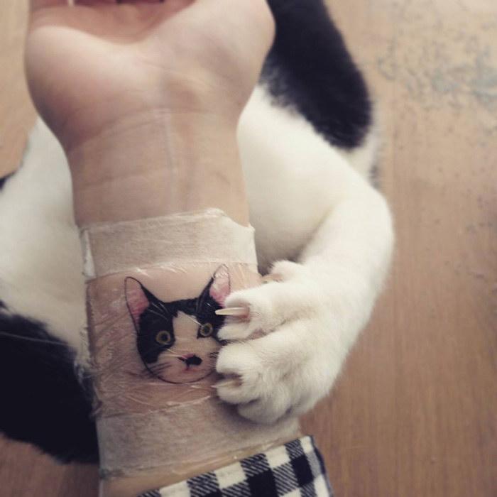 Корейские татуировки с котами