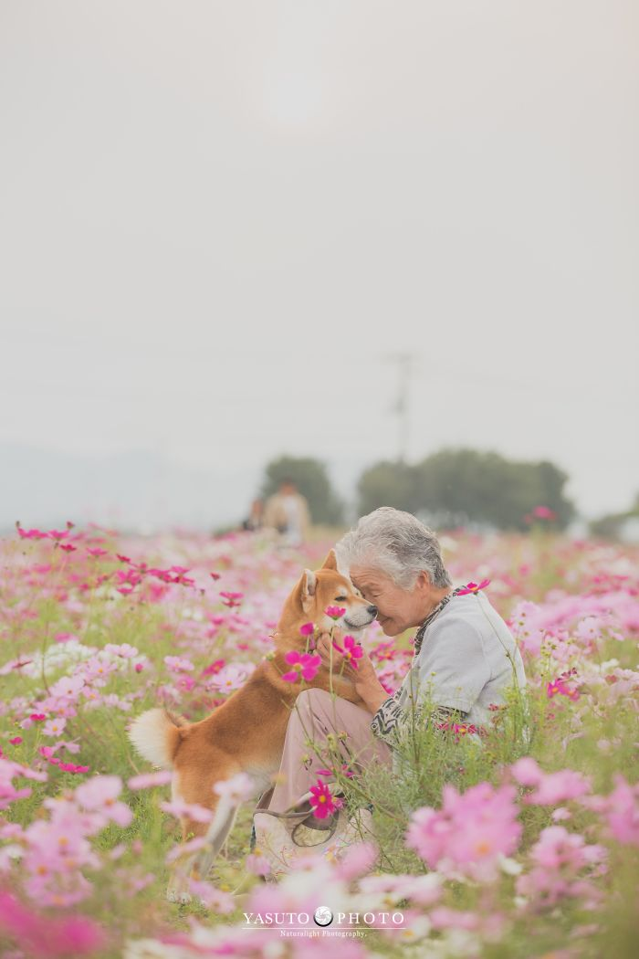 Бабушка и ее собака: трогательные фото Yasuto