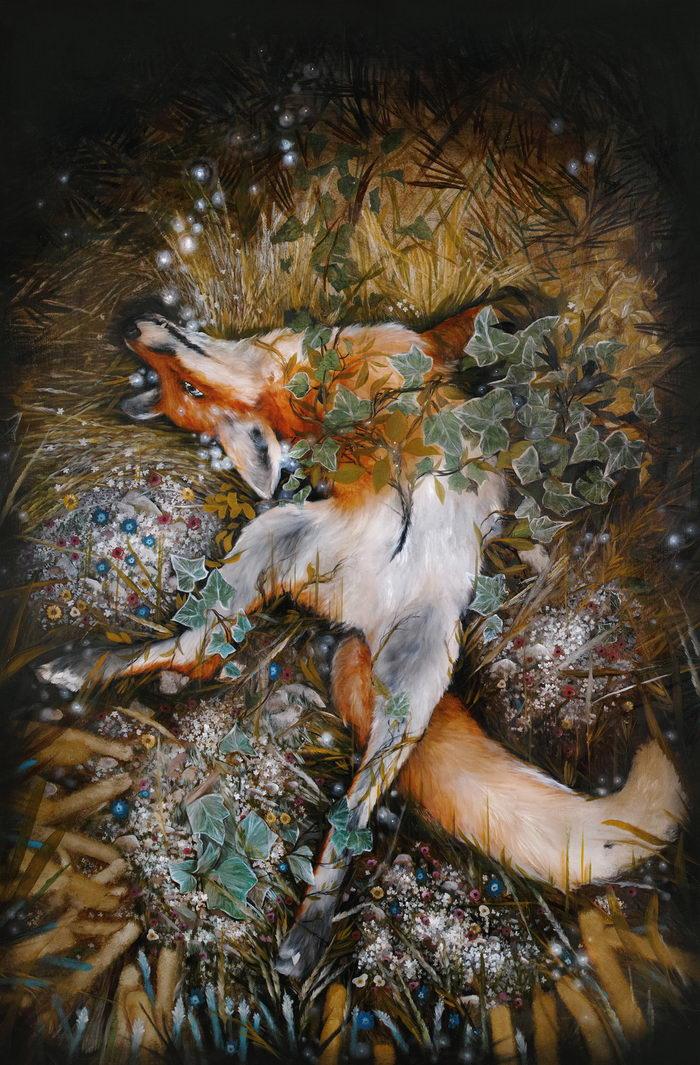 Животные и фрукты в иллюстрациях Nunzio Paci