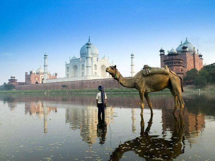 Дворец Тадж-Махал: тысяча слонов и история великой любви