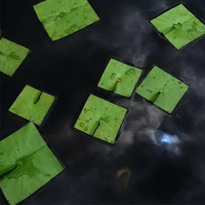 Квадратная природа в фотографиях Baku Maeda
