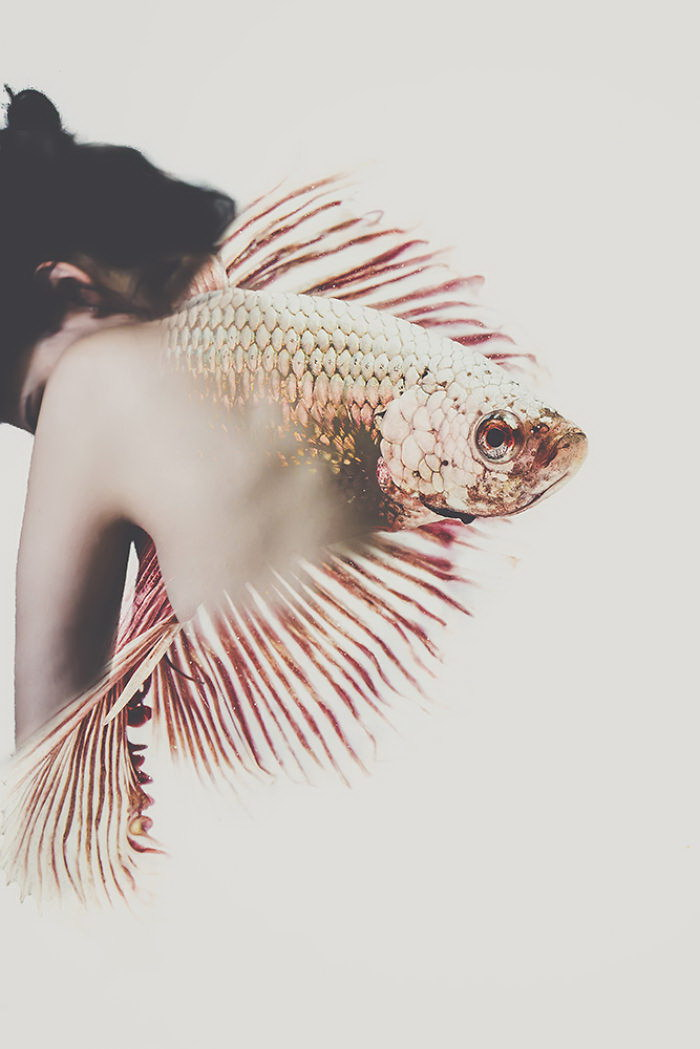 Автопортреты без лица: фотографии Omerika