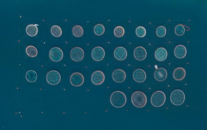 Рыбные фермы сверху в фотографиях Bernhard Lang