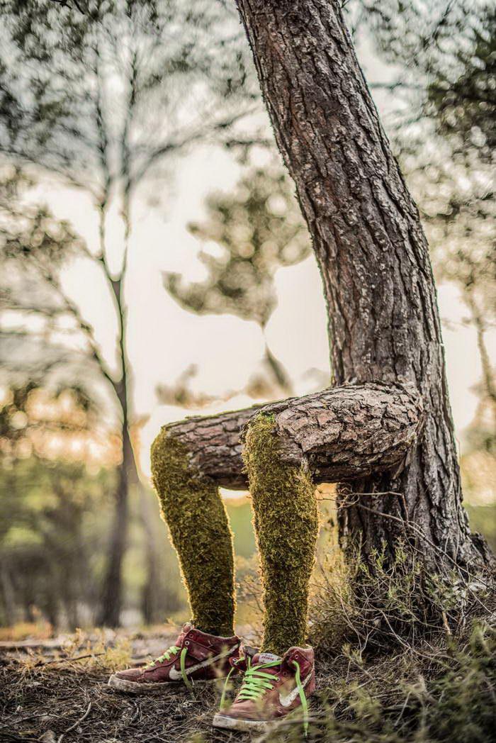 Human Nature: когда деревья становятся людьми