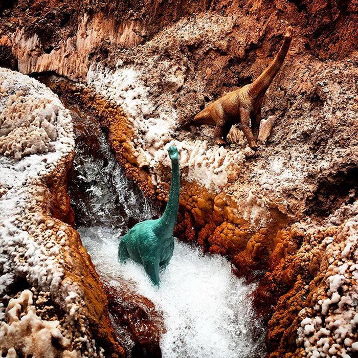 Путешествия с динозаврами: фотопроект Jorge Saenz
