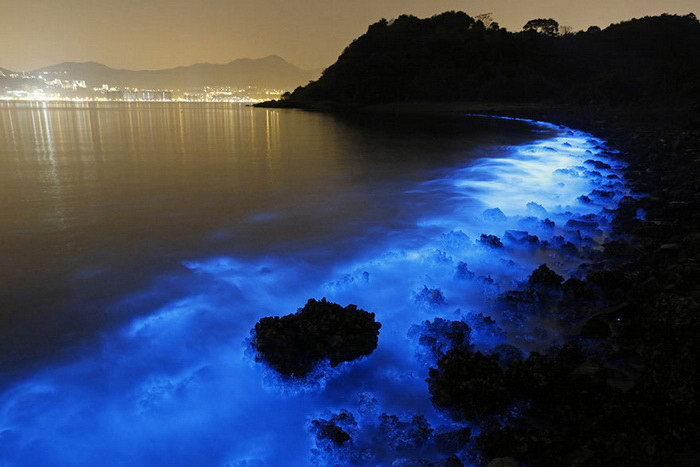 Светящийся планктон на побережье Гонконга