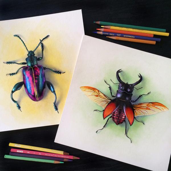 Иллюстрации Morgan Davidson