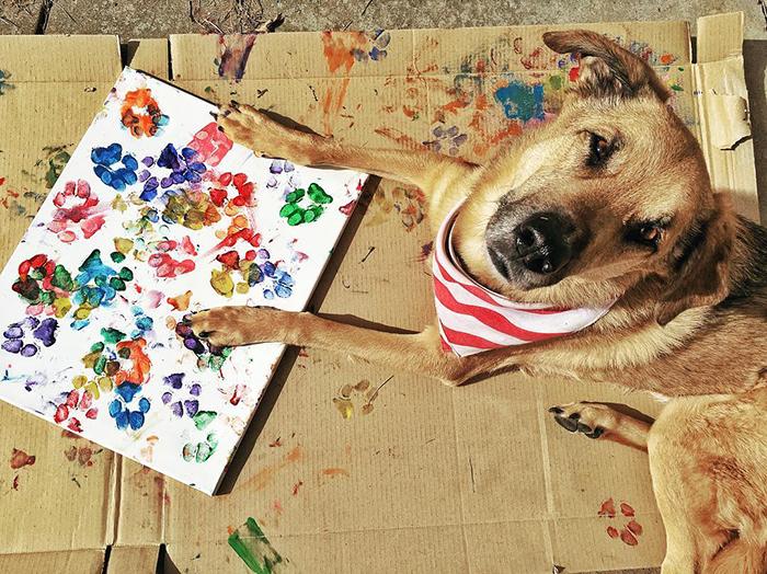 Собаки-художники и их картины