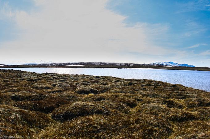 Исландия глазами русского фотографа