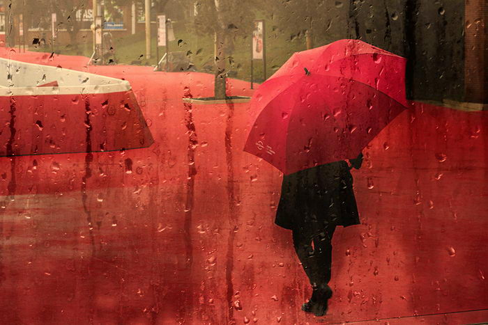 Красота дождя в фотографиях Alessio Trerotoli