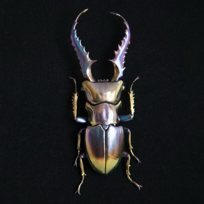 3D-жуки, напечатанные на принтере: работы Nozomi