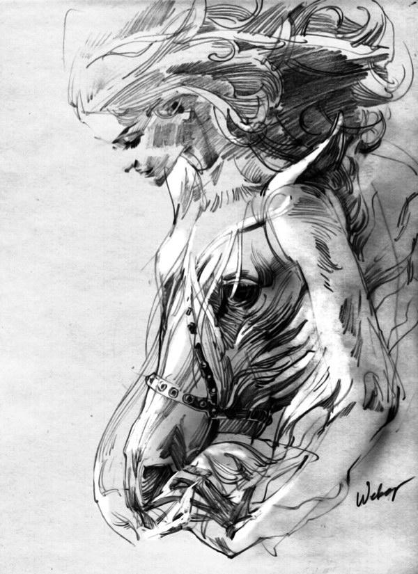 Иллюстрации Zhang Weber