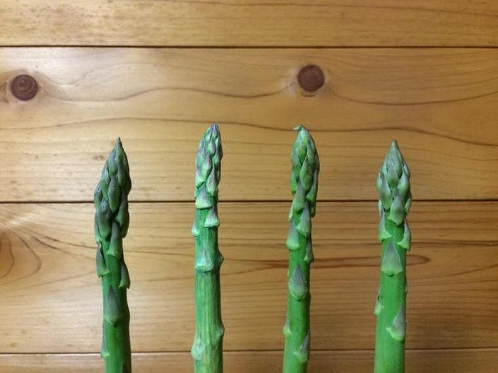 Деревянная еда Seiji Kawasaki