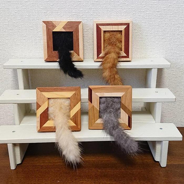 Кошачьи рамки авторства Fujita Satomi