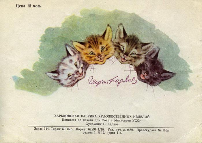 Классификатор котов и людей