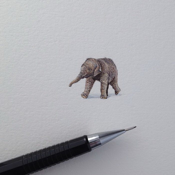 Миниатюрные рисунки Brooke Rothshank