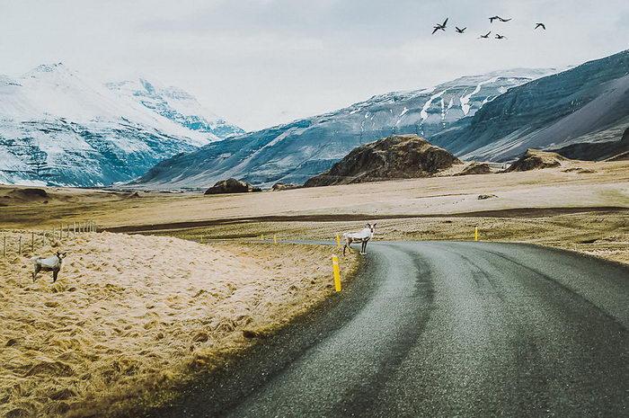 Дороги Исландии в фотографиях Michalina Okreglicka