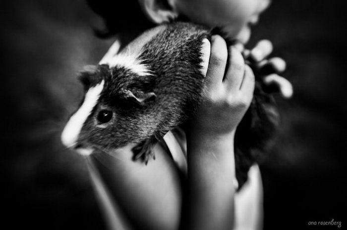 Мальчик и его домашние животные: фото Ana Rosenberg