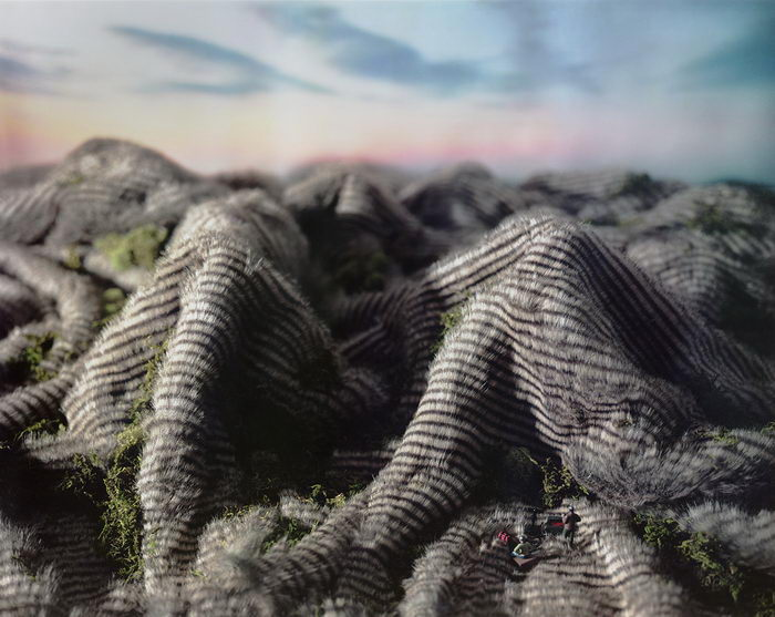 Миниатюры Дикого Запада Areca Roe