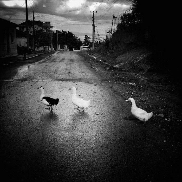 Мрачные фотографии Ekin Kucuk