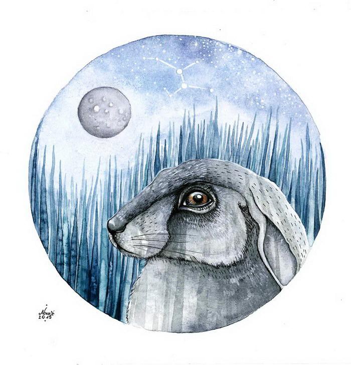 Иллюстрации Norvile Dovidonyte