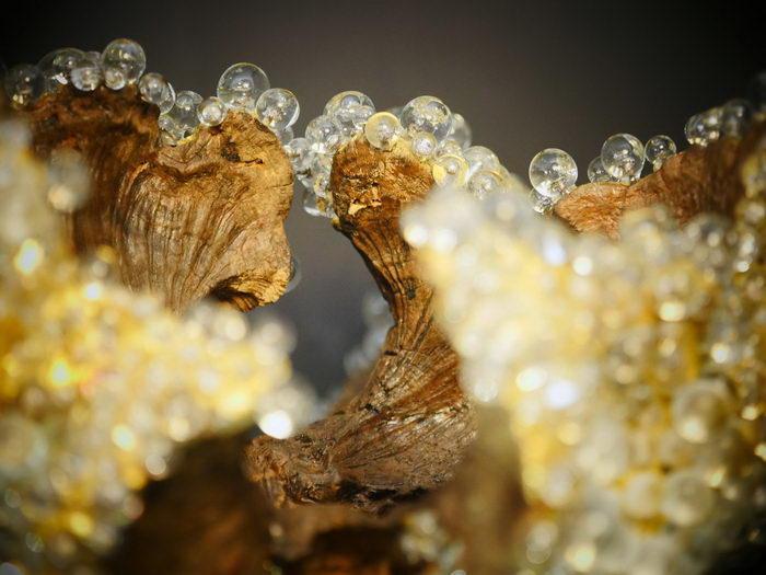 Красивейшие скульптуры Valerie Rey