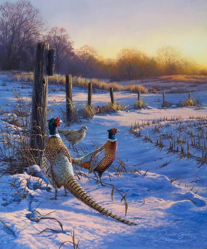 Волшебные картины Darrell Bush