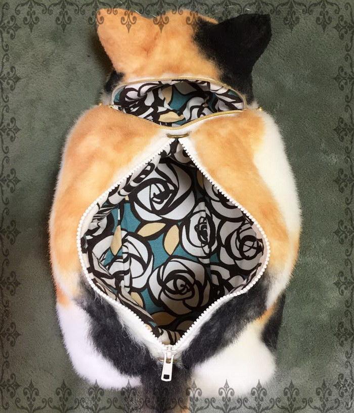 Сумки в виде котов: необычная мода или трэш?