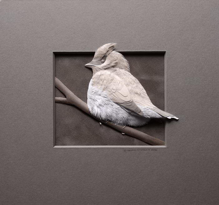 Животные из бумаги Calvin Nicholls