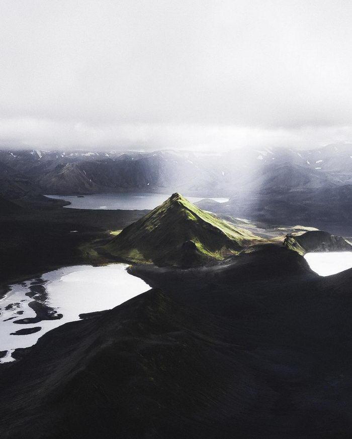 Животный мир нашей планеты в фотографиях Donal Boyd