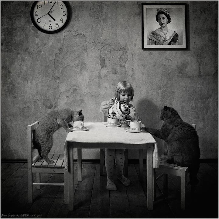 Девочка и ее кошки
