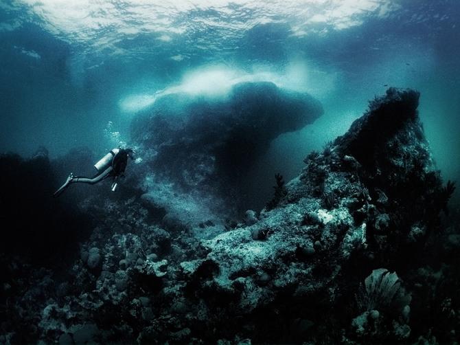 Подводный мир Julian Calverley