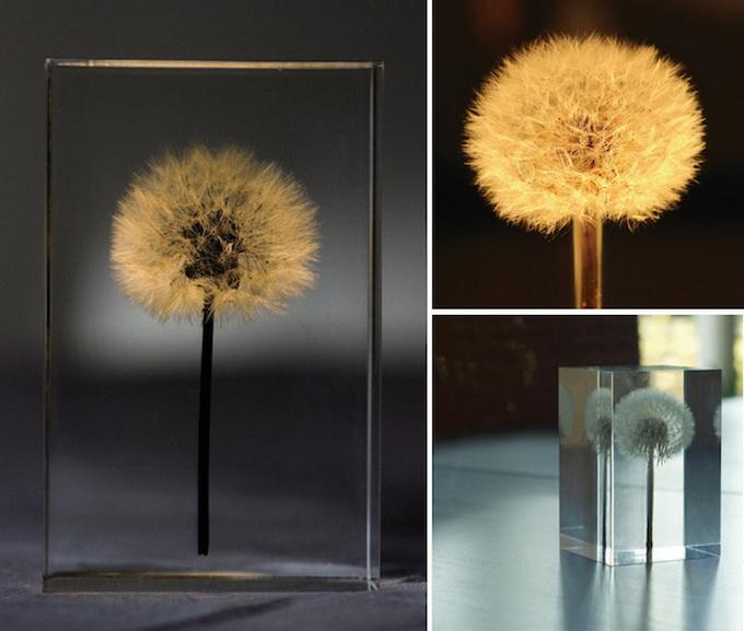 Лампы-одуванчики