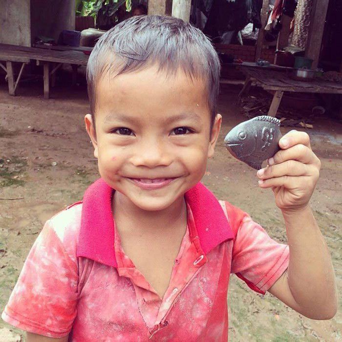 Железная рыбка как способ лечения анемии в бедных странах