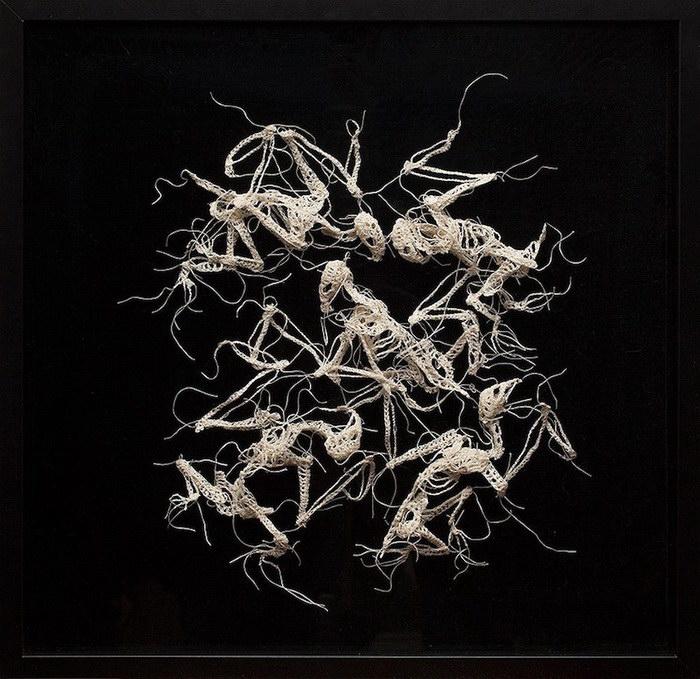 Скелеты животных Caitlin McCormack