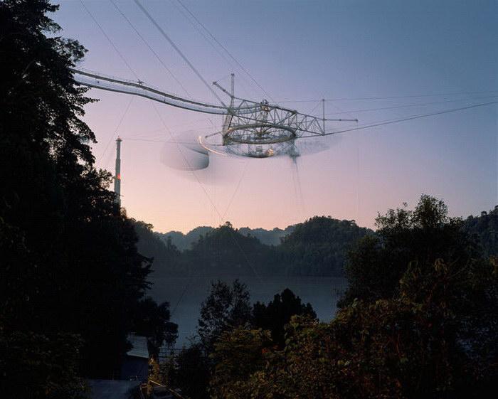 Фотографии природы Dan Holdsworth