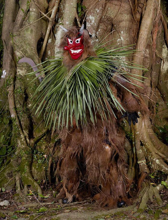 Ритуальные костюмы монстров Японии: фото Charles Fréger