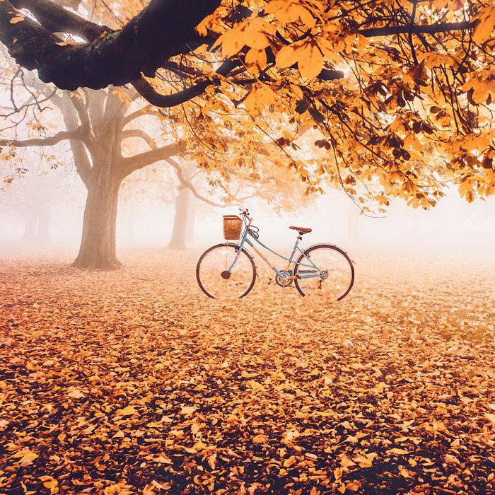 Осень в объективе Кристины Макеевой