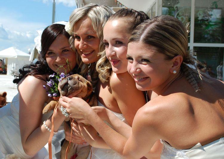 Сбежавшие невесты в Хабаровске