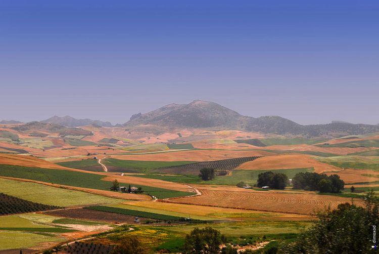 Белые домики Андалусии